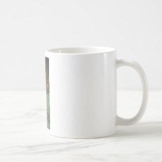 Fairytalesque Circe Coffee Mugs