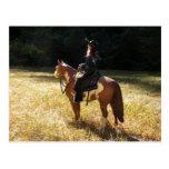 Faith and Cowboy Postcard