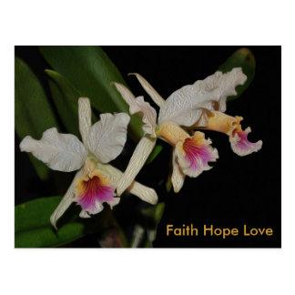 Faith Hope Love Cattleya orchid wild flower Postcard