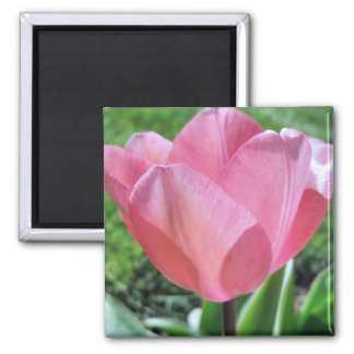 Faith Matters 2 Inch Square Magnet
