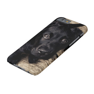 Faithful eyes of a Puppy dog Barely There iPhone 6 Case