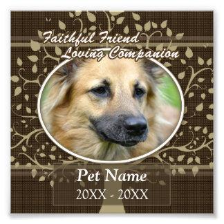 Faithful Friend Custom Pet Sympathy Photographic Print