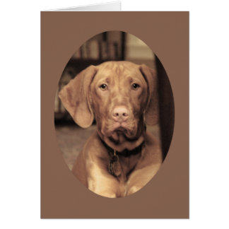 Faithful Friend Greeting Card
