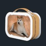 """FAITHFUL LUNCH BOX<br><div class=""""desc"""">A loyal and faithful Shiba dog.</div>"""