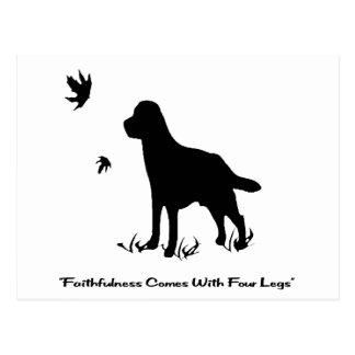 Faithfulness Comes with Four Legs Postcard