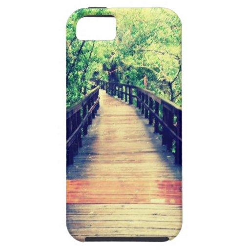 Fakahatchee Strand Boardwalk iPhone 5 Cover