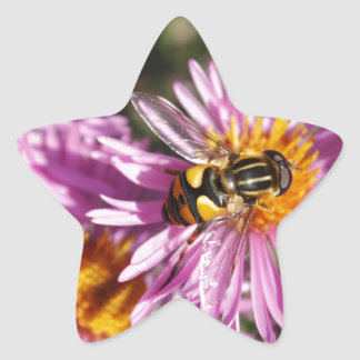 Fake Bee and Flowers Star Sticker
