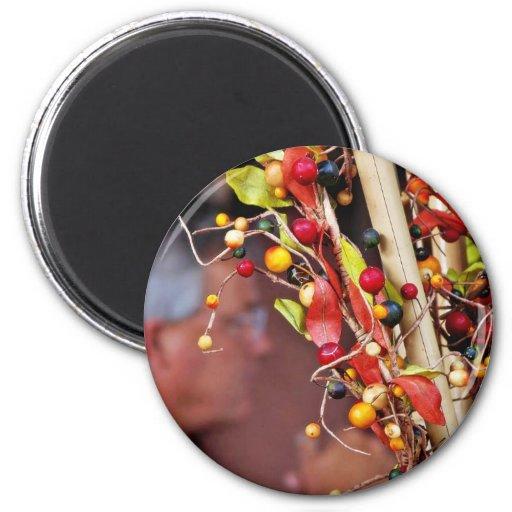 Fake Berries Magnets
