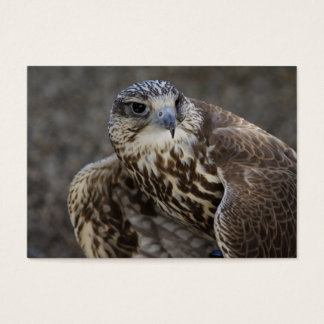 Falco cherrug business card