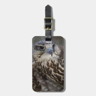 Falco cherrug tag for luggage