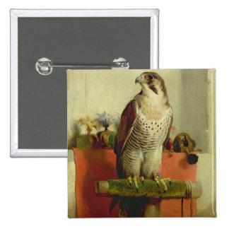 Falcon, 1837 pinback button