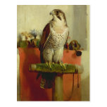 Falcon, 1837 postcard