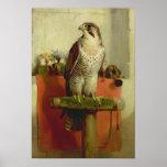 Falcon, 1837 poster