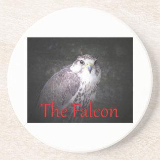 Falcon, bird of prey , wildlife,  nature,  photo coaster