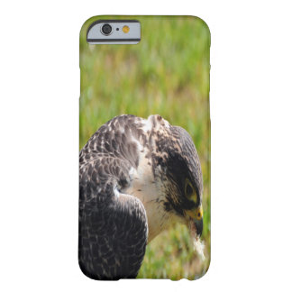 Falcon Eating Barely There iPhone 6 Case