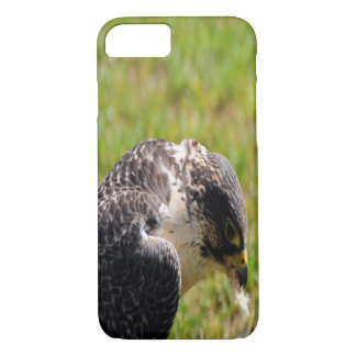 Falcon Eating iPhone 7 Case