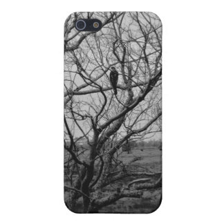 Falcon Hunting ~ Leslie Peppers iPhone SE/5/5s Case