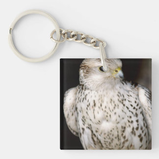 Falcon Acrylic Keychain