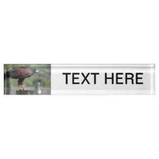 falcon on post raptor bird image name plate