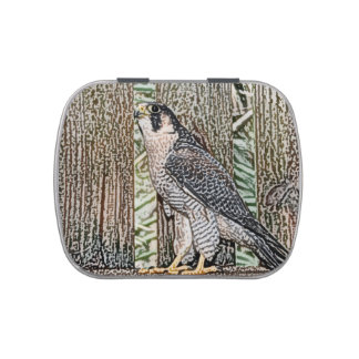 falcon sketch bird design wild animal jelly belly candy tins