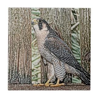 falcon sketch bird design wild animal small square tile