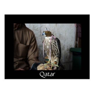 Falconry falcon black Qatar postcard