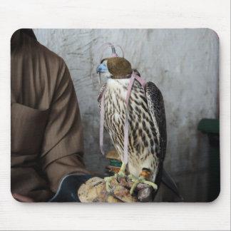 Falconry falcon mousepad
