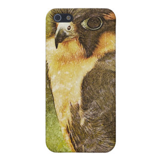 Falconry Cases For iPhone 5
