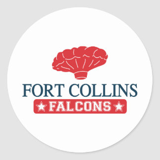 Falcons de Fort Collins - caseros de muchacho del Pegatina Redonda