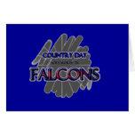 Falcons del día del país - Fort Worth, TX Tarjeton
