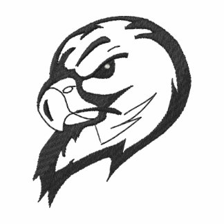 Falcons Outline