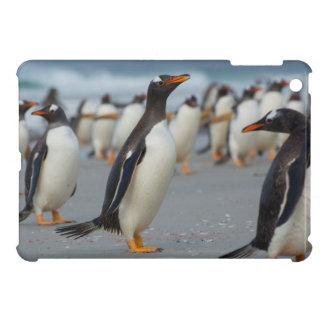Falkland Islands. Saunders Island. Gentoo 2 Cover For The iPad Mini