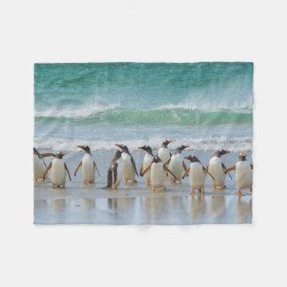 Falkland Islands. Saunders Island. Gentoo 5 Fleece Blanket