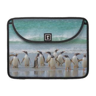 Falkland Islands. Saunders Island. Gentoo 5 MacBook Pro Sleeves