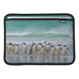 Falkland Islands. Saunders Island. Gentoo 5 Sleeves For MacBook Air