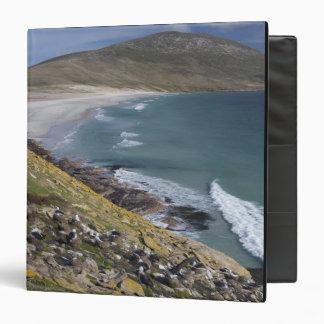 Falkland Islands, West Falkland, Saunders Binder