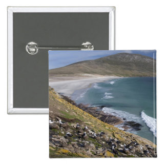 Falkland Islands, West Falkland, Saunders 2 Inch Square Button