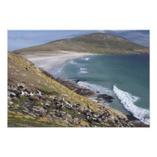 Falkland Islands, West Falkland, Saunders Photo Print