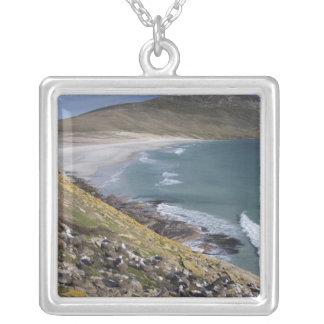 Falkland Islands, West Falkland, Saunders Silver Plated Necklace