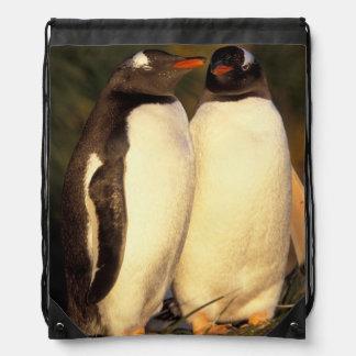 Falklands Islands. Gentoo Penguins.  (Pyroscelis Drawstring Backpack