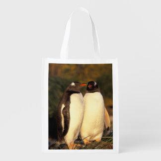 Falklands Islands. Gentoo Penguins.  (Pyroscelis Reusable Grocery Bags