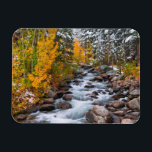 "Fall along Bishop creek, California Magnet<br><div class=""desc"">Fresh snow on aspens and pines along Bishop Creek,  Inyo National Forest,  Sierra Nevada Mountains,  California,  Usa 
