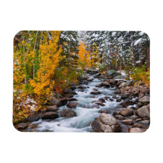 Fall along Bishop creek, California Magnet