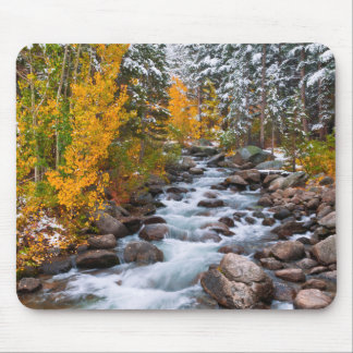 Fall along Bishop creek, California Mouse Pad