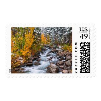 Fall along Bishop creek, California Postage