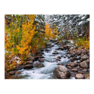 Fall along Bishop creek, California Postcard
