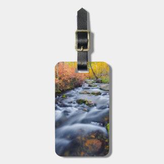 Fall along Lundy Creek, California Bag Tag