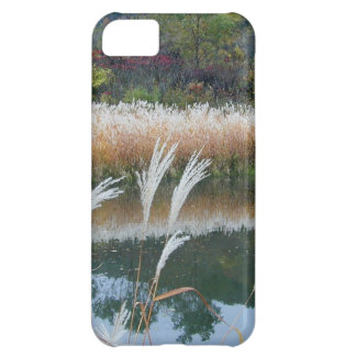 Fall along the Kickapoo river in Wisconsin iPhone 5C Cover