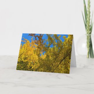 Fall and Thanksgiving Card 3 card