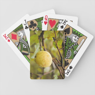 Fall Apple Bicycle Playing Cards